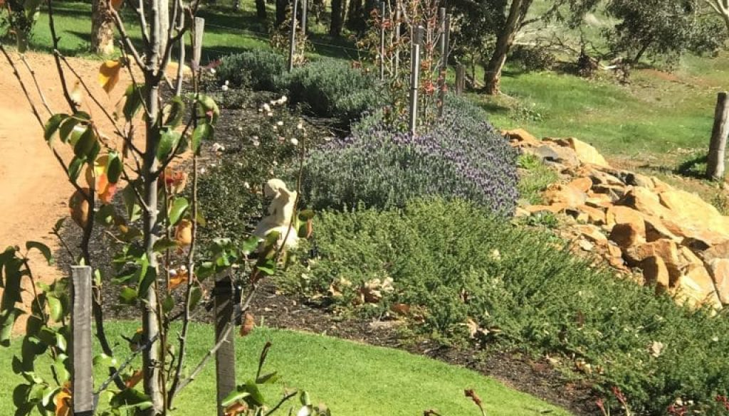 Cricklewood Farm - garden bank