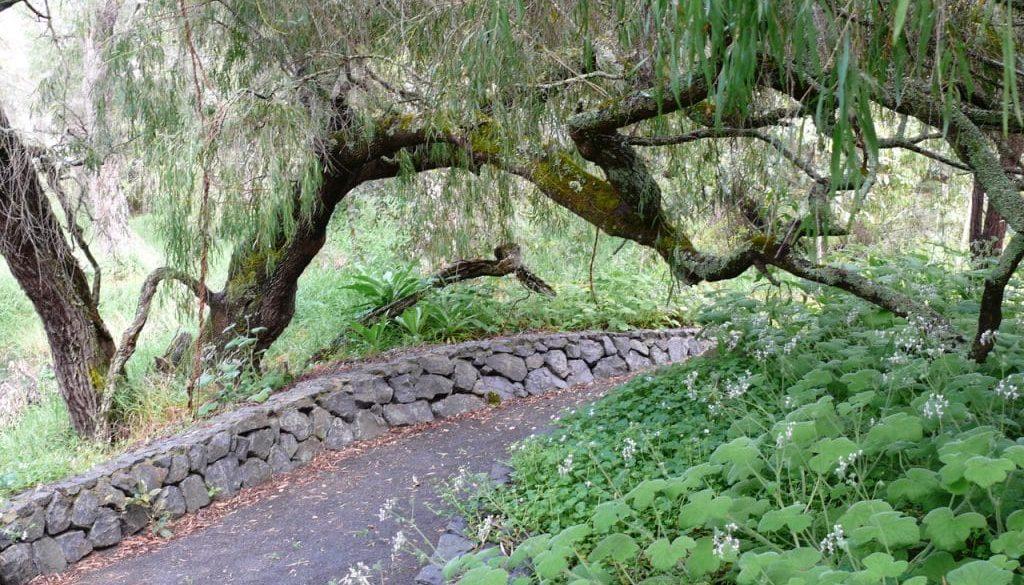 Skrolys Rock Peppy Path