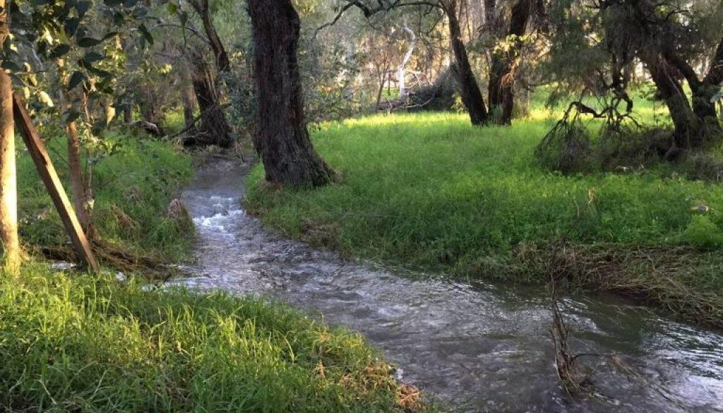 Skroyls Crooked Brook