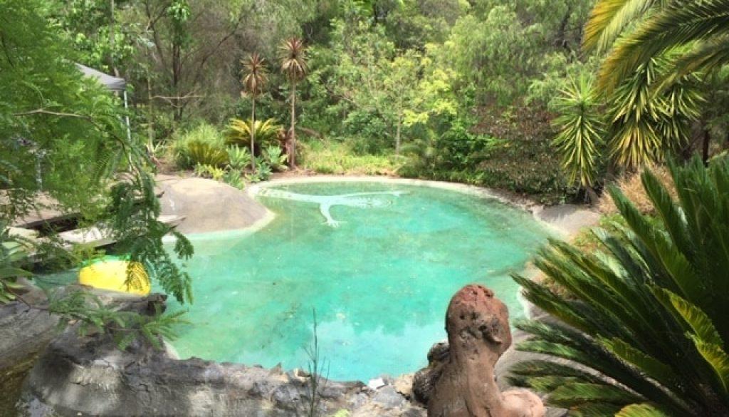 Skroyls Pool Art